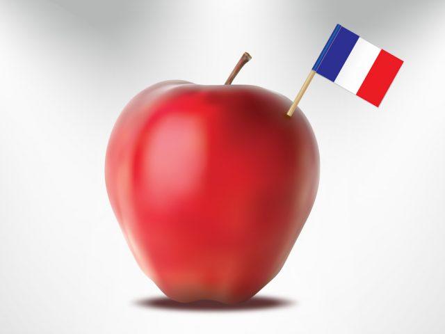 Fiches de Nomenclature : Les Fruits Communs