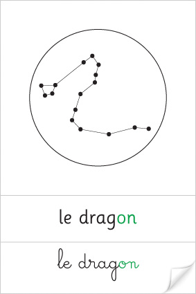 Constellation du Dragon