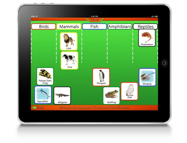 montessori-approach-to-zoology-the-animal-kingdom-vertebrates