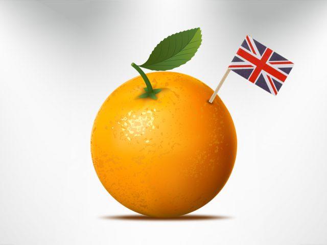 Fiches de Nomenclature en Anglais : Les Fruits