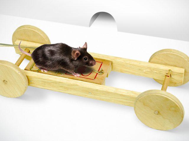Fabriquer un Tramway à Souris
