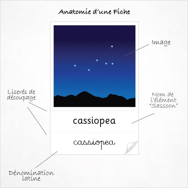 Fiche de Nomenclature des Constellations
