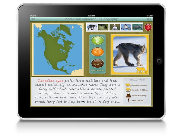 montessori-approach-to-geography-animals-of-north-america
