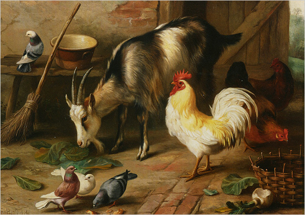 VUE-08---La-Chèvre
